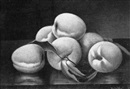 Victor Vogt, Peaches on a table