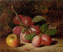 Charles Archer, Plums and an apple on a mossy bank