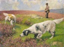 Septimus E. Scott, Setters on the moors