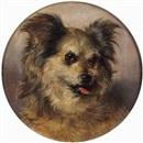 Attributed To Thomas William Earl, Head study of a terrier
