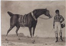 Reinier Vinkeles, A horse and his creole jockey