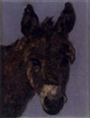 Anne Primrose Jury, The donkey