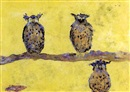 Sir Francis Cyril Rose, Owls in a sun haze