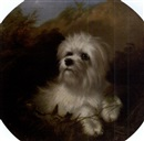 Attributed To Thomas William Earl, Terrier in a landscape
