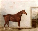 Martin Theodore Ward, A thoroughbred in a stable (+ 1 other; 2 works)