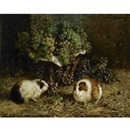 Antonio delle Vedove, Guinea pigs and a basket of grapes