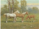 Giovanni Sanvitale, Two horses and a foal in a landscape
