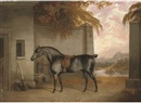 George Jackson, A saddled black horse in a yard with a river landscape beyond