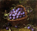 Alexis Kreyder, Plums in a basket