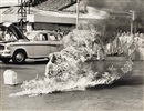 Malcolm Browne, Buddhist monk, Rev. Quang Duc, burns self to death