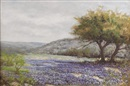 Tom Hamilton, Untitled: Bluebonnet landscape