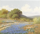 Palmer Chrisman, Untitled: Texas bluebonnets