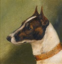Edward Aistrop, Head of a fox terrier