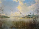 Vernon Ward, Mallard in flight over Sowley Pond, New Forest