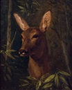 Claude-Charles Kudhardt, Head of a deer