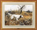 "John P Cowan, ""Lady,"" English setter"