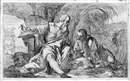 Francesco Giovanni Raimondi, Der hl. Hieronymus in der Wüste (after Giovanni Battista Cignaroli)
