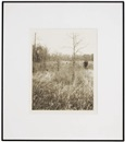 Jan Groover, Plain fields (10 works)