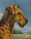 "Francis Kenneth Elwell, Portrait of the Airedale Terrier bitch ""Sudstone Vivien"""