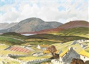Harry Epworth Allen, Connemara landscape