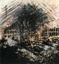 Gabriel Rivera, Greenhouse