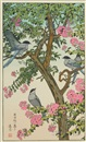 Toshi Yoshida, Songbird on flowering tree