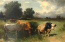 Conrad Bühlmayer, Herder and cattle