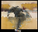 Keith Joubert, Chobe River Elephant