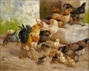 William Baird, Poules et poussins