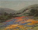 William Franklin Jackson, Wildflowers on a hillside
