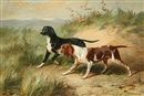 Conradyn Cunaeus, Two dogs