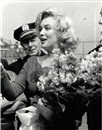 Eli Attar, Marilyn monroe with flowers