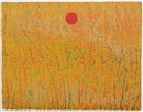 Sergio Gonzales Tornero, Yellow field