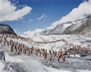Spencer Tunick, Aletsch Glacier, Switzerland