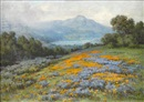 William Franklin Jackson, Poppies and lupine with Mt. Tamalpais in the distance