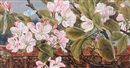 Rosa Brett, Apple blossom and butterfly