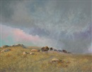 Milton Achtimichuk, Plains bison under stormy sky