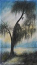 Will Ousley, Cypress silhouette with Spanish moss