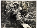 Horst (PH) Faas, Combat victims, South Vietnam