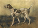 Edmund Henry Osthaus, Untitled (Hunting dog)