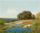 Palmer Chrisman, Bluebonnet hillside
