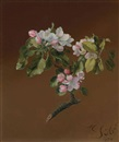 Martin Johnson Heade, Spray of apple blossoms