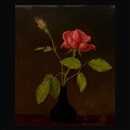 Martin Johnson Heade, Red rose in a vase