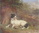 Martin Theodore Ward, Hunting dog and rabbit