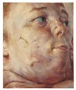 Jenny Saville, Interfacing