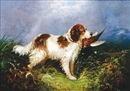 Langlois, Spaniel with his catch