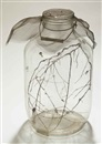 David Hammons, Fly jar