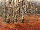 Josef Csillag, Woman gathering wood amongst birch trees