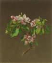Martin Johnson Heade, Apple blossoms