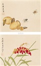 Ma Lianliang, 工笔草虫双挖 (various sizes; set of 2)